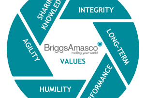 briggsamasco_values